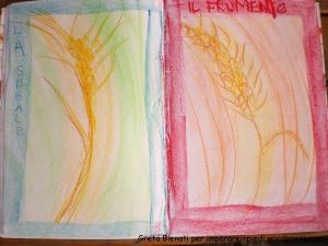 disegno cereali 1