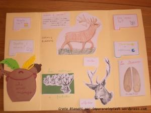 lapbook cervo 2