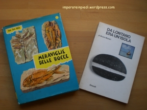 libri geologia
