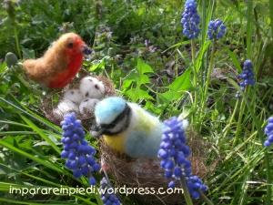 wood birds